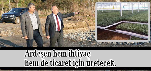 Ardeşen Belediyesi Sera İçin İlk Kazmayı Vurdu