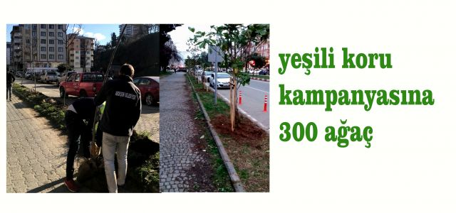 Ardeşen Belediyesinden 300 Ağaç