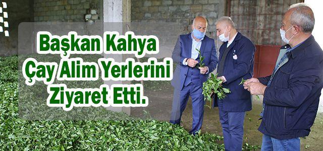 Başkan Kahya Çay Alım Yerlerini Ziyaret Etti.