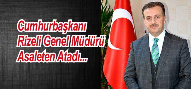Cumhurbaşkanı Rizeli Genel Müdürü Asaleten Atadı.