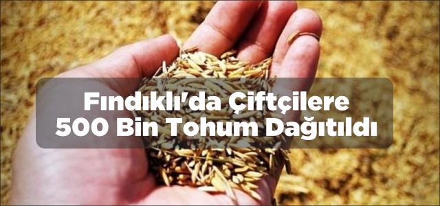 Fındıklı'da çiftçilere 500 bin tohum dağıtıldı