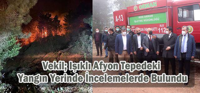 Işıklı'daki Orman Yangını Söndürüldü