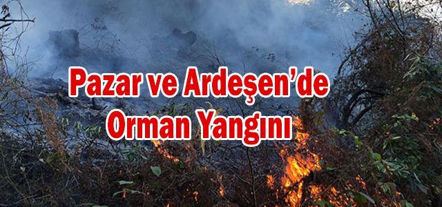Pazar ve Ardeşen'de Orman Yangını