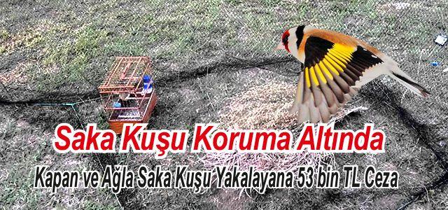 Saka Avına 53 Bin TL Para Cezası