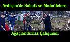 Ardeşen'de Sokak ve Mahallelere Ağaçlandırma Çalışması