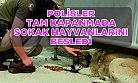 Artvin'de polisler tam kapanmada sokak hayvanlarını besledi
