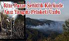 Rize Pazar Şehitlik Köyünde Anız Yangını Felaketi Üzdü