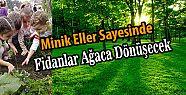 Atatürk Anaokulundan Orman Haftası Etkinliği