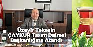 Üzeyir Tekeşin, Çaykur Tarım Dairesi...